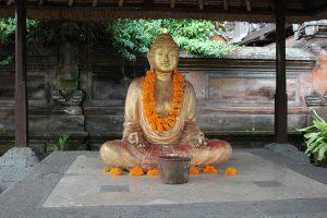 Bali Retreats
