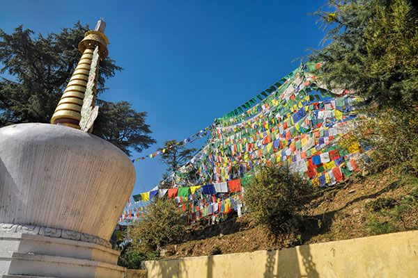 Yoga Retreat India - dharamsala prayer flags